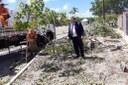 Emsurb atende pedido de Américo para substituição de árvores na Igreja Santa Tereza D' Ávila